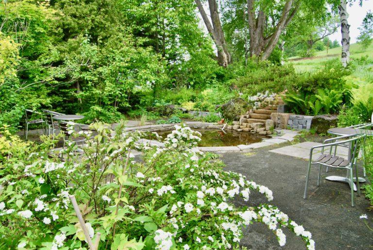 木の声が聞こえる庭 6月